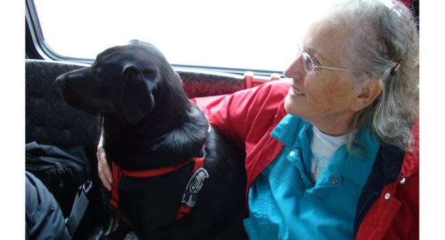 """""""Dog on Board"""" Here's Eclipse's Story!"""